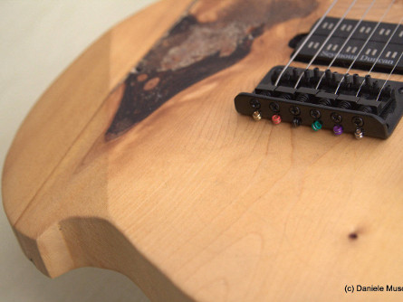 Electric Guitar Custom Designs